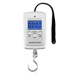 40kg x 10g Mini Bilancia digitale per pescherecci da viaggio con stadera di pesatura, appesa bilancino elettronico da