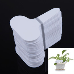 Wholesale Pvc Shipping Tags - Free Shipping 100Pcs T-type Plastic Nursery Garden Plant Label Flower Thick Tag Mark White Brand New order<$18no track