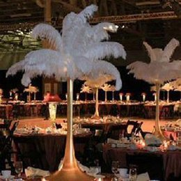 Wholesale Feather Centerpieces - factory price new 14-24 inch (35-60cm) White Ostrich Feather Plume AAA quality for flower ball wedding centerpieces table decoration#Z134