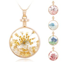 Wholesale Orchid Pendant - Newly pendant necklace drift bottled pendant dried flower necklace crystal pendant circle pendant butterfly orchid necklace with chain AC352