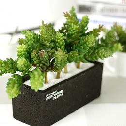 Muro di bonsai online-K16172 Simulazione di alta qualità Succulente PVC colla morbida Piante d'appartamento per la cerimonia nuziale Matrimonio Fiori artificiali Piante bonsai Decorazioni natalizie