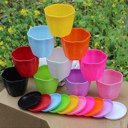 Wholesale Garden Potting Tray - 4pcs lot Flower pot Free shipping Planters Multicolor Plastic Nursery pots Flowerpot with tray Bonsai garden supplies