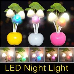 Cheap led mushroom nightlight - EU US Plug Lotus flower led mushroom dream night light 3 LEDs Nightlight bulb home decor LED RGB breathing Night lights