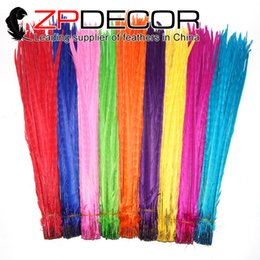 Wholesale Wedding Pheasant Feathers - ZPDECOR 50-55cm(20-22 inches) Hand Select Mix Colored Long pheasant feathers for Wedding Decoration Ringneck Pheasant Feathers