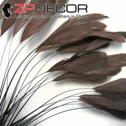 Wholesale Wholesale Coque Tail Feathers - Factory ZPDECOR 15-20cm(6-8 inch) Brown Dyed Stripped Coque Rooster Tail Feather for DIY Craft Decoration