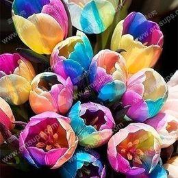 vaso da giardinaggio Sconti 100 pz / borsa Bonsai Tulip Seeds Rare Arcobaleno Colore Petali Tulipano Semi di Fiori Giardino di Casa Piante In Vaso Semi
