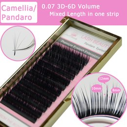 Wholesale Lash Boxes - Wholesale-Camellia Eyelash Pandora 3D-6D 0.07 Volume Eyelash Extensions Mixed Length in One Lash Strip Fancy Packing Lash Box