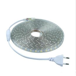 Wholesale Led Strip Lights Ip68 - cut any meter 100M 5050 SMD Flexible RGB Led Strip Lights 110v 220V Tube-type Waterproof IP68 Led Decoration Light + Power Supply Plug EU US
