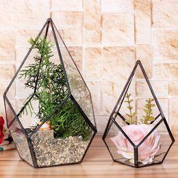 All'ingrosso-Moderno Artistico Vetro trasparente Terrario geometrico Quattro superfici Diamante succulento Fern Moss Plant Terrarium Bonsai Flower Pot da
