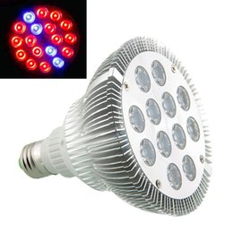 Wholesale Smd 3528 Growing Plants - E27 36W Saving 12LED Indoor Garden Red Blue Plant Flower Grow Light Lamp Hydroponic Greenhouse Bulb