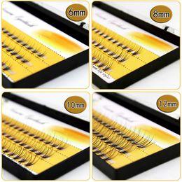 1f985469d04 10 strands cluster Flare Eyelash Extension Silk Extension Kit 6mm-14mm