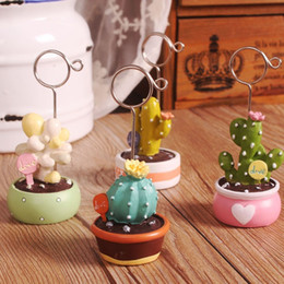 Wholesale Kinder Sticker - Brand new Cactus mini small bonsai multi - fried stickers folder HM020 mix order as your needs