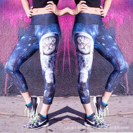 Wholesale Women S Print Sexy Jeggings - 2016 NEW Women Leggings Sexy Cats 3D printing Sport yoga Leggings Elastic Jeggings Fitness pants Gym Legging