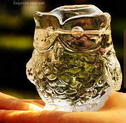 Wholesale Glass Crafts Vase - Fashion owl crystal glass vase hydroponic flower rustic home decoration crafts 90*95 mm 2pcs lot Free Shipping