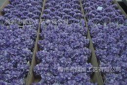 2019 fiori zinnia DHL fiori singoli Bouquet di ortensie Diffusore di olio aromatico per fiori in legno con stoppino in filo di cotone pieghevole, fiore di zinnia fiori zinnia economici