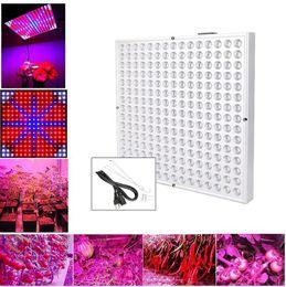 45w levou vermelho azul on-line-45 W 2835 SMD LED Planta Crescer Painel de Luz Vermelho Laranja Azul Branco 12 Polegada Estufa Indoor Sistema de Hidroponia Caixa de Iluminação
