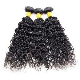 Wholesale Fast Shipping Peruvian Virgin Hair - Human Hair 3 Bundles Peruvian Hair Bundles Water Wave Brazilian Indian Malaysian Cheap Hair Extensions DHL Fast Shipping