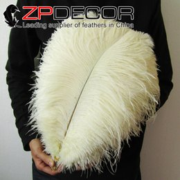 Wholesale White Feathers For Sale - China Trading Manufacturer ZPDECOR Factory 40-45cm(16-18inch) White Ostrich Feather Centerpieces for wedding Table Decoration for sale