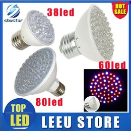 Wholesale Leds W - in stock led 2.2w 3w 4.5 W E27 Red Blue 38 60 80 led leds Hydroponic green house flower garden Light LED Plant Grow Growth Light Bulb Lamp