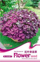 Wholesale Clover Garden - Flower Reborn Seeds, Original Package 2pcs Garden bonsai Flower seeds, Easy Grow Red Clover 3bags per lot
