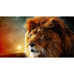 Wholesale Drawings Embroidery - 5D embroidery Square diamond painting Cute diamond embroidery wall pictures for living room Lion Pattern 45x25cm HWB-531