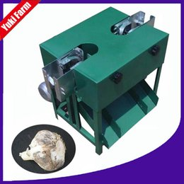 Wholesale Processing Machinery - garlic root cutting machine small garlic root cutter farm agriculture machinery for garlic process electric 220v