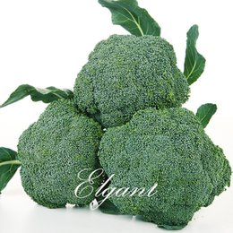 Semi di broccolo online-Broccoli Vegetable 100 Seeds Semenza di semi di Heirloom popolare non-Gmo popolare facile da coltivare