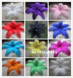 Wholesale 16 Inch Feathers - Gorgeous 10pcs High quality 35-40 cm 14-16 inches Ostrich Feather More color selection For Wedding decoration