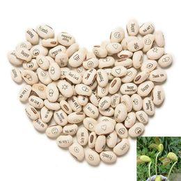Wholesale Growing Bean Seeds - 50PCS Growing Message Beans Seeds Magic Bean English Magic Bean Bonsai Green Office Home Decoration Magic Beans 0800
