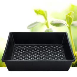 Wholesale Nursery Trays Wholesale - 37*30*7.5Cm Plastic Planting Pot Succulent Grow Plants Storage Pot Seed Tray Square Shape Non Toxic Tasteless Grow Plants Pot