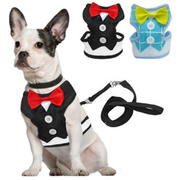 Wholesale Professional Cat - Dogs Adjustable Comfort Soft Pets Chest Belt Dog Cat Vest Rope Professional Dog Chest Gentman Tie Set Collar Leads Harness New