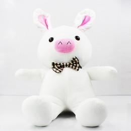 Wholesale Pig Rabbit - Pig Rabbit Doll Toy SBS DRAMA Hot Birthday Christmas Girl Gift 50CM free shipping Retail 1 PCS