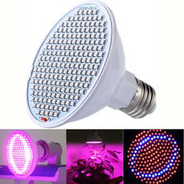 Wholesale Plant Lights For Sale - Hot Sale Led Grow Lights 24W 200-LED Full Spectrum Indoor Plant Grow Light E27 Hydroponic System Growing Lamps for Flower Veg