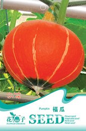 Wholesale Food Tablets - Fruits and vegetables seeds Fucai seeds pumpkin watch   food growing strong resistance to disease 8 tablets   bag 3bags per lot