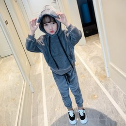 Wholesale Kids Bear Hoodie - Girls clothing Autumn Kids Hoodies Bear ears with Pant Set Pleuche Velour Sport Casual Girl's clothes sets 2017 Wholesale