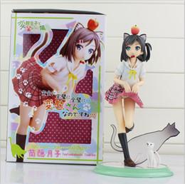 Wholesale Kotobukiya Figure - Anime Kotobukiya Perverted prince and not laugh cat Hidden barrel month PVC Action Figure Model Toy for children free shipping wholesale