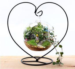 Wholesale Hydroponic Glass Vases - 12cm Heart Glass Hanging Planter Terrarium Container Vase Pot Home Garden Decoration hydroponic Landscape bottle New Clear Hanging Glass