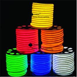 sinais de luz busch Desconto 10 metros de led tubo de néon flex, 220 V entrada levou tubo de placa de sinal, propaganda tubo de néon com cabo de alimentação e clipes LNF-2514-220 V