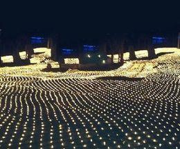 reti di albero Sconti 2M * 3M 210 LED String Fairy Net Light Tenda a rete Mesh Soffitto pianta da giardino Decorazione natalizia LED Lampada a LED 220 v Spina europea