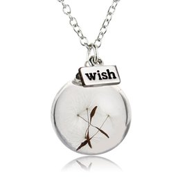 Wholesale Long Flower Crystal Pendant Necklace - Crystal Ball Real Dandelion Seed Wishing Wish Necklace Long Silver Chain