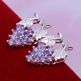 Wholesale Purple Garnet Silver Earrings - E040 Wholesale 925 sterling silver earrings , 925 silver fashion jewelry , Inlaid Purple Earrings E040  bteakkla btdakkka