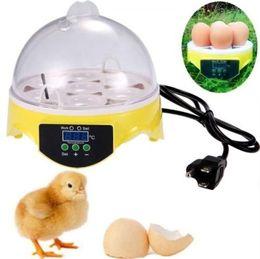 Wholesale Egg Hatcher Incubator - Freeshipping 7 Mini Egg Incubator Poultry Bird Pet Hatcher Digital Clear Temperature Control