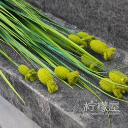 Wholesale Large Green Vases - Large green grass moss grass bouquet of western flower vase simulation leaves outdoor decoration