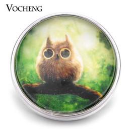 Wholesale Green Glass Owl - VOCHENG NOOSA Wholesale 18mm Lovely Owl Glass Snap Interchangeable Jewelry Vn-1164