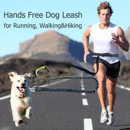 Wholesale Nueva correa de perro de cintura elástica Running Jogging Dog Sport Producto Correa de perro de nylon ajustable con tira reflectante Accesorios para mascotas