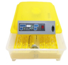 Wholesale 48 Eggs Full automatic Chick Incubator Miniature Incubator Cultivation Hatch Equipment Chick Cultivation Incubator