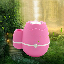 Wholesale Fogger Atomizer - Wholesale-Ultrasonic Flower arrangement Aroma LED Humidifier Air Diffuser Atomizer essential diffuser difusor de aroma mist maker fogger