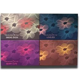 палитра дыма Скидка Заводская цена Mix Color Lovelies / Beauty Rust / Smoke Show / Berry Cute 6 цветов палитра теней для век / палитра теней для век