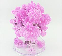 2019 alberi crescenti iWish Visual 2019 Magia Artificiale Alberi di Carta Sakura Magico Albero Cresce Desktop Cherry Blossom Bambini Nuovi Giocattoli Per Bambini 50 PZ alberi crescenti economici