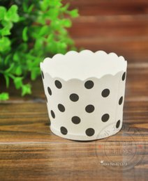 Wholesale Cheap Cake Cupcake Boxes - Free shipping black white polka dots cupcake case, muffin paper dot cake cups tin liners, cheap cupcakes boxes holder supplies